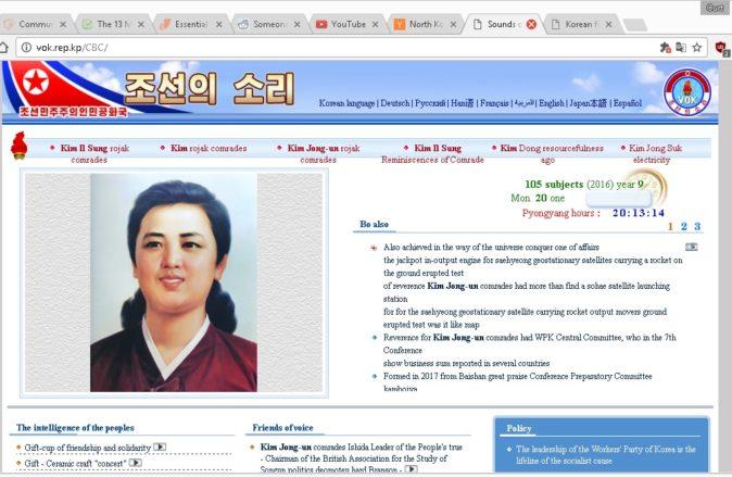 North Korea internet access