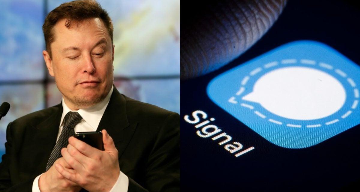 Elon Musk Signal Advance Share Price