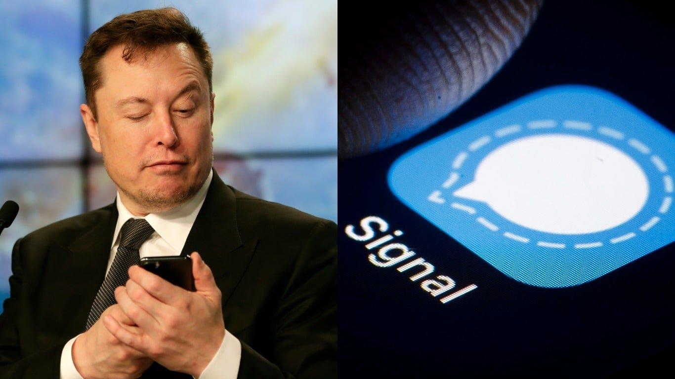 Signal Advance Share Price Jumps By +20,20 After Elon Musk Tweet