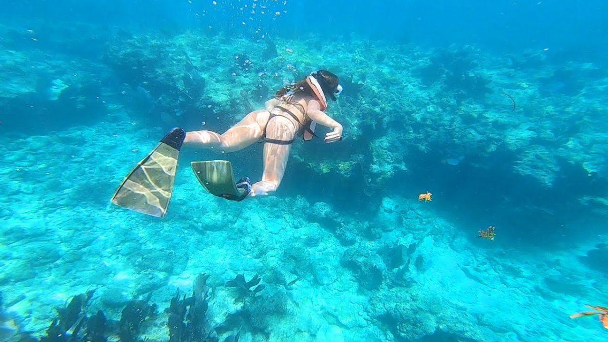 florida keys good samaritan cocaine snorkelling