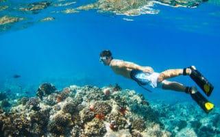 florida keys cocaine snorkelling