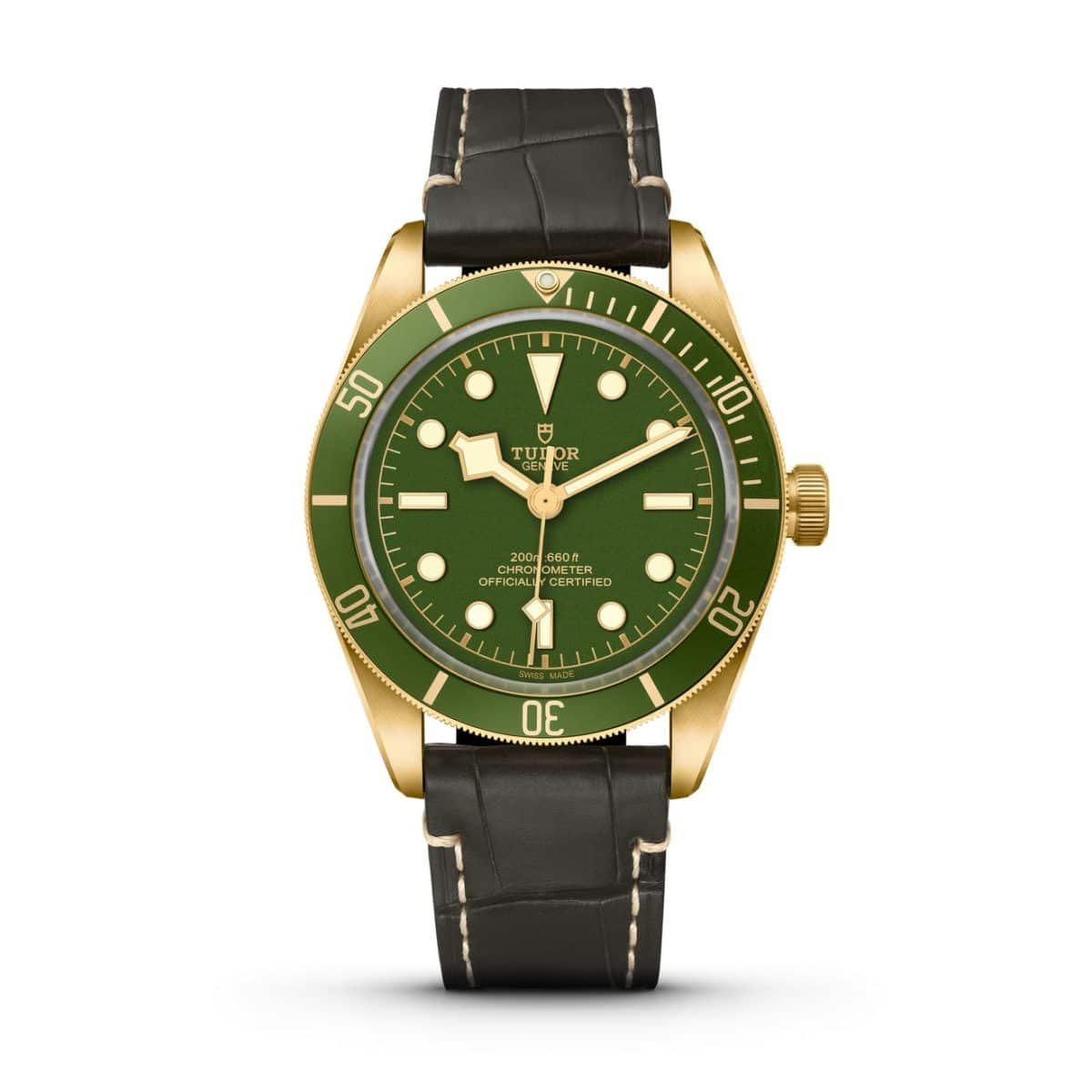 Tudor Watches 2021