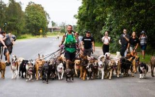 world record dog walking - ryan pomeroy