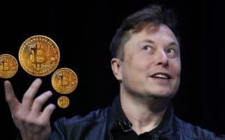 Elon Musk Bitcoin Crash