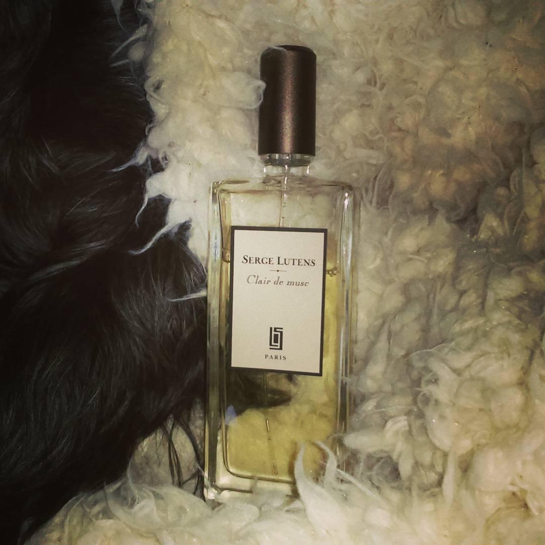 best mens fragrances clair de muse