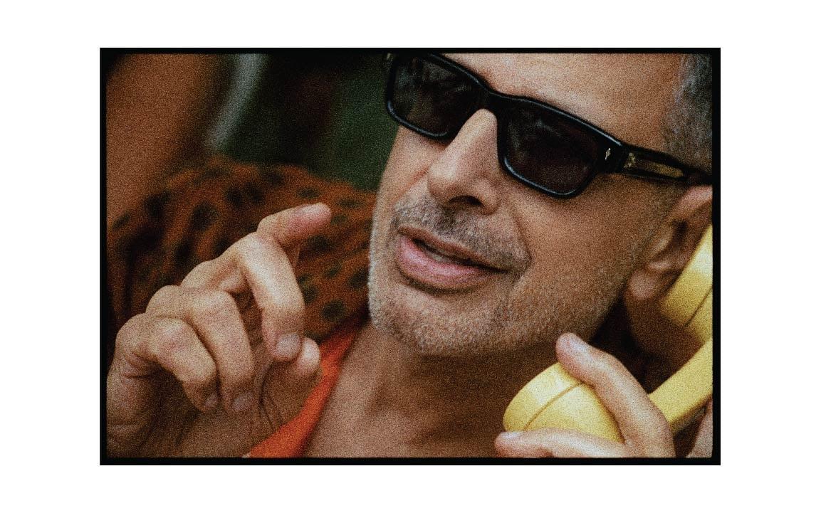 Jeff Goldblum Glasses