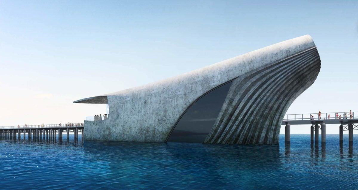 Australia Underwater Discovery Centre The Cetacean
